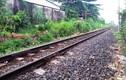 Gọi điện cho mẹ giữa đường sắt, người đàn ông bị tàu hỏa tông chết