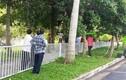 Người đàn ông treo cổ trong khuôn viên sân bay Tân Sơn Nhất