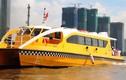 Người dân TP.HCM chính thức được sử dụng tàu buýt công cộng