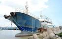 """Truy tìm chủ nhân tàu """"ma"""" trôi trên vùng biển La Gi"""