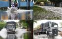 Công nhân nghỉ làm, công ty đóng cửa vì nước tấn công KCN