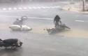 Gió bão thổi bay người, xe la liệt ở thành phố Nha Trang