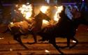 Khoác áo lửa, cưỡi ngựa trong Đại hội thể thao du mục