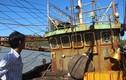 Vụ tàu vỏ thép hư hỏng hàng loạt: Cần điều tra, khởi tố
