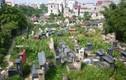 Bán đấu giá đất nghĩa trang Bình Hưng Hoà để xây công viên