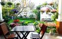"""Đọ vườn rau sạch trong biệt thự """"khủng"""" các đại gia Việt"""