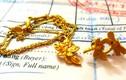 Prima Gold mập mờ quy chế thu mua vàng: Lỗ hổng lớn, khách thiệt hại