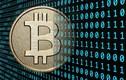 Thu học phí bằng bitcoin, Đại học FPT có thể bị phạt 200 triệu đồng