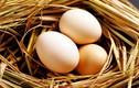 Top thực phẩm giảm cân tốt nhất cho bà mẹ mới sinh