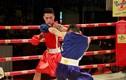 Trận thắng nhàn hạ của võ sĩ boxing Hà Nội