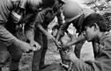 Loạt hình ám ảnh về chiến tranh Việt Nam của A. Abbas (2)