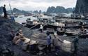 Việt Nam cuối thập niên 1990 trong ảnh của Hiroji Kubota (2)
