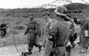 Cuộc chiến tranh Triều Tiên qua loạt ảnh của Werner Bischof (2)