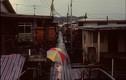 Cuộc sống ở Brunei năm 1992 qua ống kính người Nga (2)