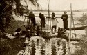 Ảnh quý về Việt Nam từ một cuốn sách cổ của Pháp (2)