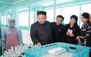 Ông Kim Jong-un đưa vợ đi thăm nhà máy mỹ phẩm