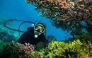 14 trải nghiệm du lịch sắp tuyệt chủng