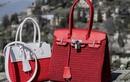 Mốt chơi túi Hermes, Gucci độc nhất thế giới của chị em Việt
