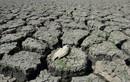 Hé lộ sự thật kinh hoàng về hiện tượng El Nino