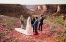 Ảnh lễ cưới siêu lung linh nhưng đầy mạo hiểm của cặp đôi Mỹ