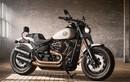 Harley-Davidson Softail 2018 giá từ 329 triệu có gì?