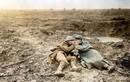Tình người giữa cuộc chiến đẫm máu bậc nhất lịch sử Thế giới