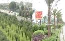 """Video: """"Khai hoang"""" đại lộ hiện đại nhất Việt Nam"""