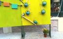 Video: Phát minh tưới cây độc đáo cho người lười