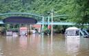 Mưa lớn ở Quảng Ninh: Ngập lụt nhiều nơi, một người mất tích