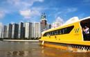 Bus đường sông TPHCM: Hữu ích cho du lịch, nhưng có giảm ùn tắc?