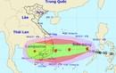 Khẩn trương sơ tán 430 nghìn dân, ứng phó bão số 12
