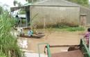 Nguy cơ lũ quét, sạt lở đất… từ Thừa Thiên Huế đến Phú Yên