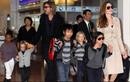"""Angelina Jolie đòi Brad Pitt """"hùn tiền"""" nuôi 6 con nhỏ"""