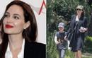 Angelina Jolie xuống sắc thậm tệ kể từ khi làm vợ Brad Pitt