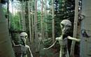 Điều gì xảy ra khi con người tìm thấy người ngoài hành tinh?