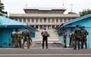 John Nilsson-Wright: Quan chức Triều Tiên đào tẩu có giá trị tình báo lớn