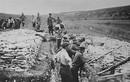 Chùm ảnh nước Mỹ trong Chiến tranh thế giới 1