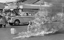 Ảnh Việt Nam lọt top những bức ảnh chấn động toàn cầu