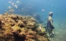Chốn ăn chơi chìm dưới nước bị lãng quên của giới siêu giàu La Mã