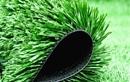 Thực hư cỏ nhân tạo sân bóng đá gây ung thư