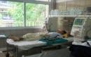 100 bệnh nhân chạy thận định kỳ ở Hòa Bình sẽ đi đâu?