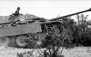 """Video: Cực hiếm cảnh """"sát thủ diệt tăng"""" Jagdpanther khai hỏa"""