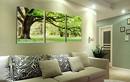 Phong thủy: Vị trí treo tranh ba cây cổ thụ
