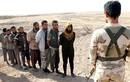 Hình ảnh hơn 1.000 phiến quân IS đầu hàng ở Hawija