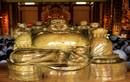 An vị tượng Phật bằng gỗ thủy tùng gần 200 triệu năm