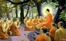 Vì sao Đức Phật còn tóc mà chư Tăng thì không?