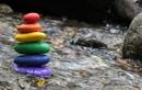 Phật tử đồng tính vẫn có thể tu học tốt hay không?