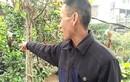 500 trẻ mầm non An Khánh sơ tán: Dân hít khói lạ cũng nôn mửa