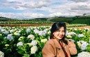 Đừng bỏ lỡ cảnh đẹp vườn cẩm tú cầu hot nhất Đà Lạt