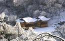 Sững sờ trước cảnh sắc mùa đông ở Trương Gia Giới